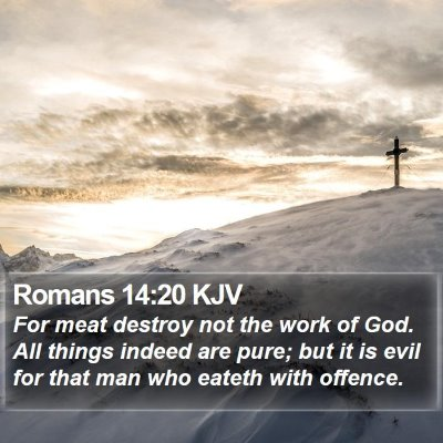 Romans 14:20 KJV Bible Verse Image