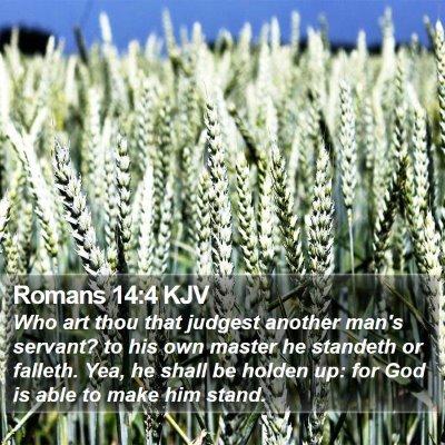Romans 14:4 KJV Bible Verse Image