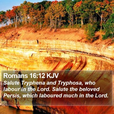 Romans 16:12 KJV Bible Verse Image
