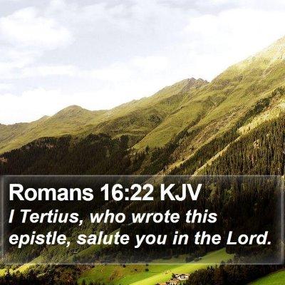 Romans 16:22 KJV Bible Verse Image