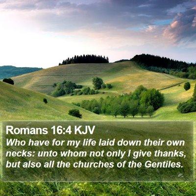 Romans 16:4 KJV Bible Verse Image