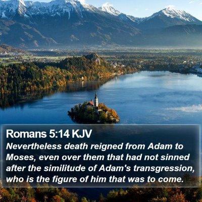 Romans 5:14 KJV Bible Verse Image