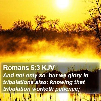 Romans 5:3 KJV Bible Verse Image
