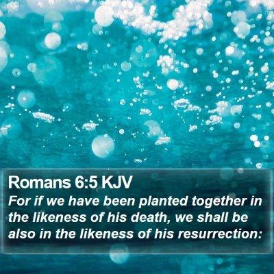 Romans 6:5 KJV Bible Verse Image