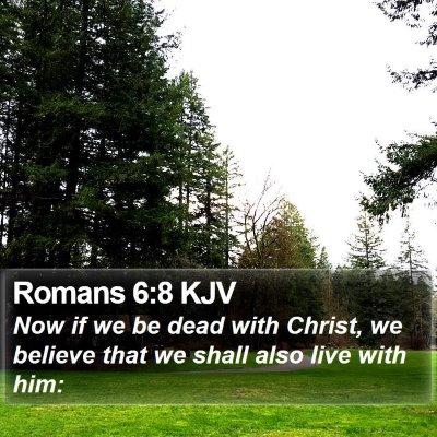 Romans 6:8 KJV Bible Verse Image