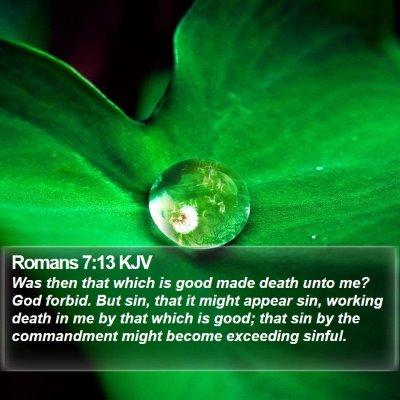 Romans 7:13 KJV Bible Verse Image