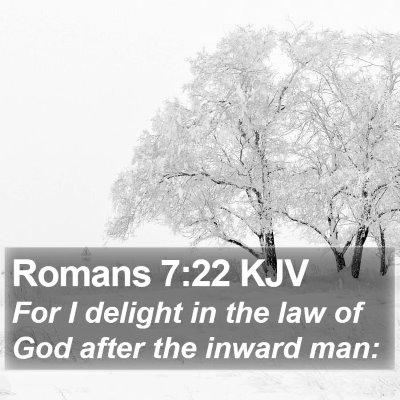 Romans 7:22 KJV Bible Verse Image