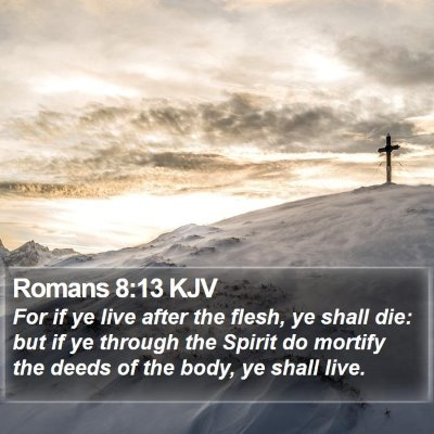 Romans 8:13 KJV Bible Verse Image