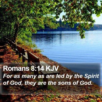 Romans 8:14 KJV Bible Verse Image