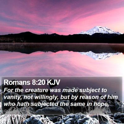 Romans 8:20 KJV Bible Verse Image