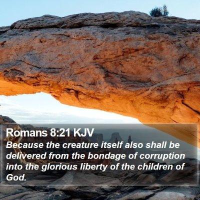 Romans 8:21 KJV Bible Verse Image