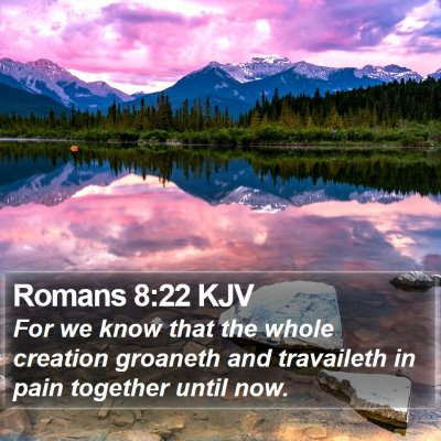 Romans 8:22 KJV Bible Verse Image