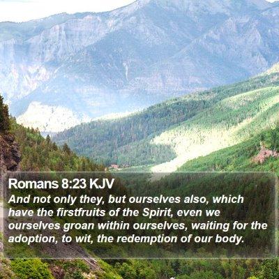 Romans 8:23 KJV Bible Verse Image