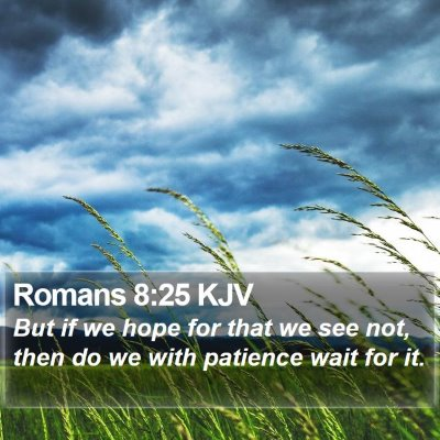 Romans 8:25 KJV Bible Verse Image