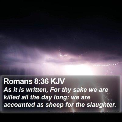 Romans 8:36 KJV Bible Verse Image