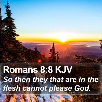 Romans 8:8 KJV Bible Verse Image