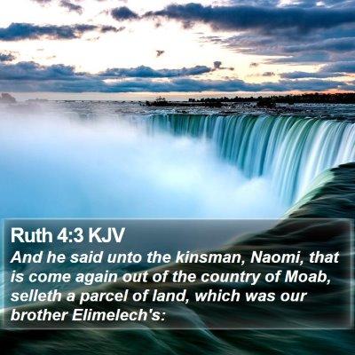 Ruth 4:3 KJV Bible Verse Image