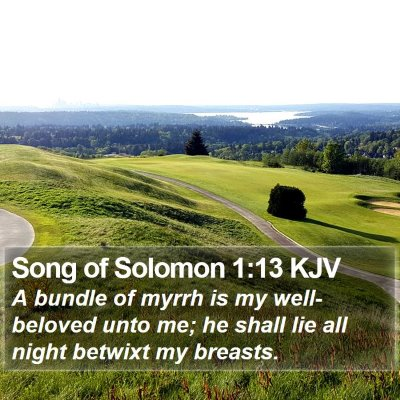 Song of Solomon 1:13 KJV Bible Verse Image