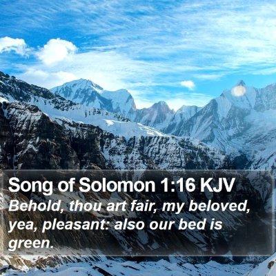 Song of Solomon 1:16 KJV Bible Verse Image