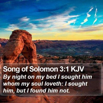Song of Solomon 3:1 KJV Bible Verse Image