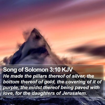 Song of Solomon 3:10 KJV Bible Verse Image
