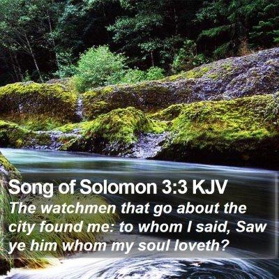 Song of Solomon 3:3 KJV Bible Verse Image