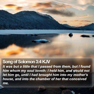 Song of Solomon 3:4 KJV Bible Verse Image