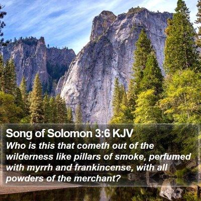 Song of Solomon 3:6 KJV Bible Verse Image