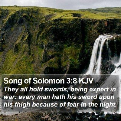Song of Solomon 3:8 KJV Bible Verse Image