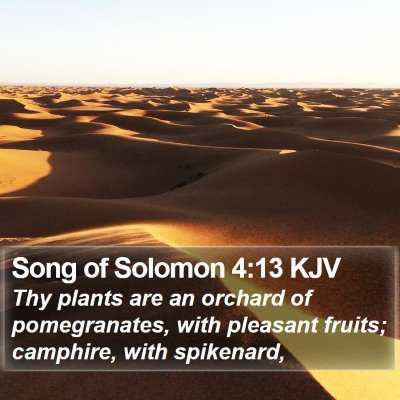 Song of Solomon 4:13 KJV Bible Verse Image
