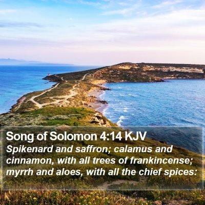 Song of Solomon 4:14 KJV Bible Verse Image