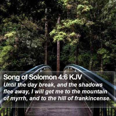Song of Solomon 4:6 KJV Bible Verse Image