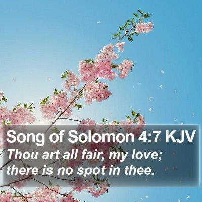 Song of Solomon 4:7 KJV Bible Verse Image