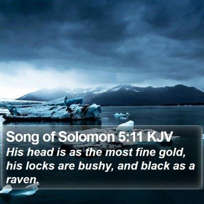 Song of Solomon 5:11 KJV Bible Verse Image