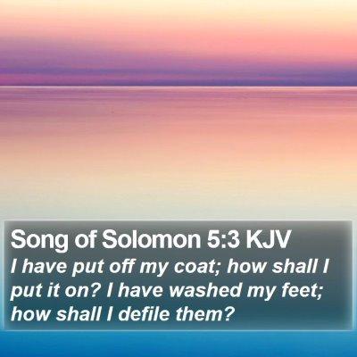 Song of Solomon 5:3 KJV Bible Verse Image