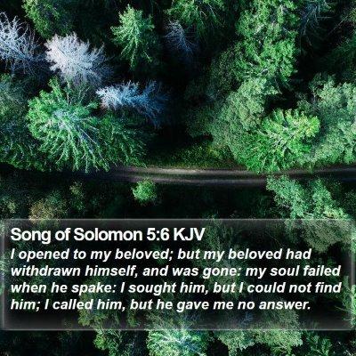 Song of Solomon 5:6 KJV Bible Verse Image