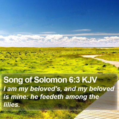 Song of Solomon 6:3 KJV Bible Verse Image
