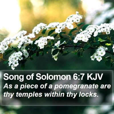 Song of Solomon 6:7 KJV Bible Verse Image