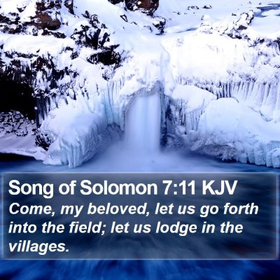 Song of Solomon 7:11 KJV Bible Verse Image