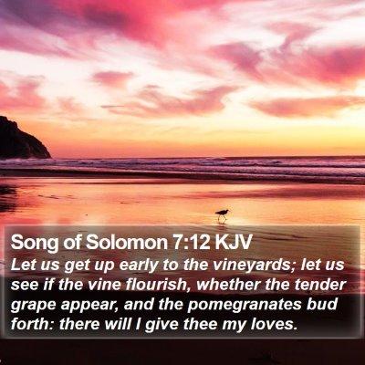 Song of Solomon 7:12 KJV Bible Verse Image