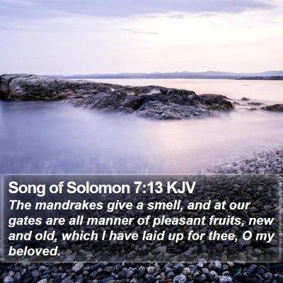 Song of Solomon 7:13 KJV Bible Verse Image