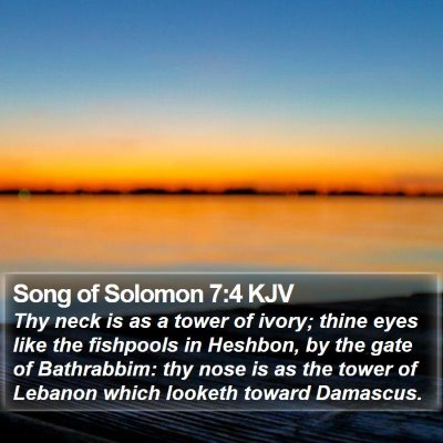 Song of Solomon 7:4 KJV Bible Verse Image