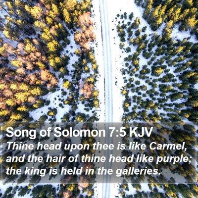 Song of Solomon 7:5 KJV Bible Verse Image