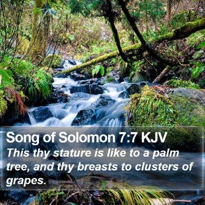 Song of Solomon 7:7 KJV Bible Verse Image
