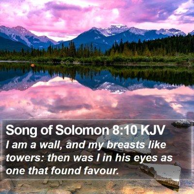 Song of Solomon 8:10 KJV Bible Verse Image