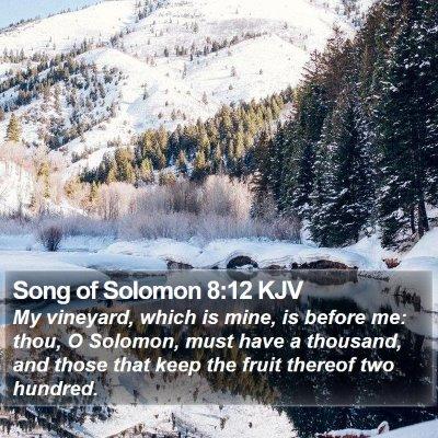 Song of Solomon 8:12 KJV Bible Verse Image