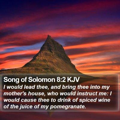 Song of Solomon 8:2 KJV Bible Verse Image