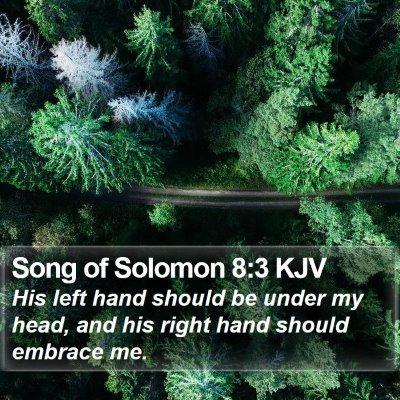 Song of Solomon 8:3 KJV Bible Verse Image