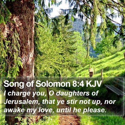 Song of Solomon 8:4 KJV Bible Verse Image