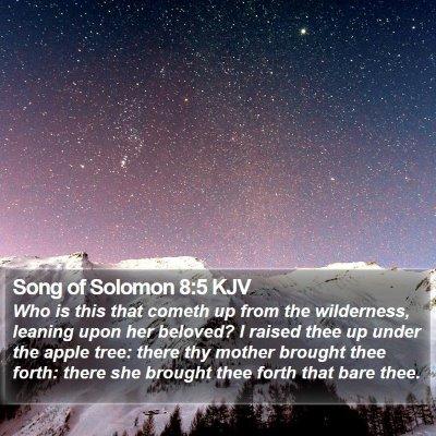 Song of Solomon 8:5 KJV Bible Verse Image